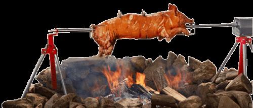 baviator méchoui charcoal spit roaster