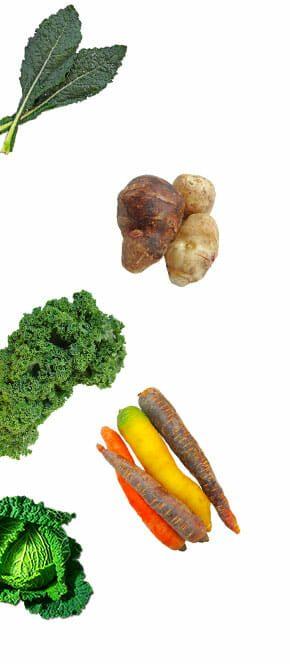 vegetable-left